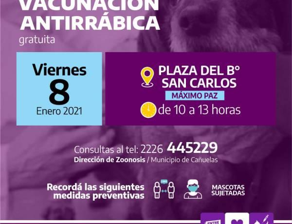 Máximo Paz: campaña de vacunación antirrábica gratuita