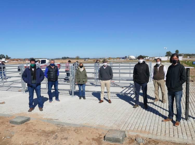 Se demora la llegada del Mercado de Agroganadero a Cañuelas