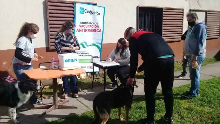 Plan de vacunación antirrábica en el barrio Hipotecario