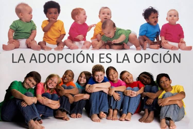 Capacitación para adopciones