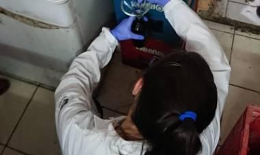 La PFA desarticuló en Cañuelas y Martín Coronado una banda criminal que comercializaba aceite adulterado