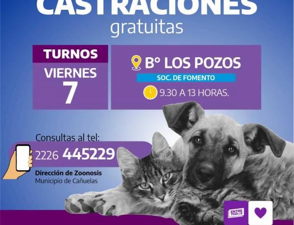 Campaña de vacunación y castración animal en Los Pozos